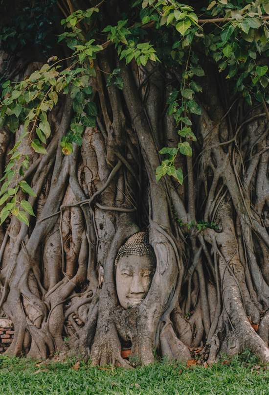 Ayutthaya: viaje a la capital perdida de Tailandia