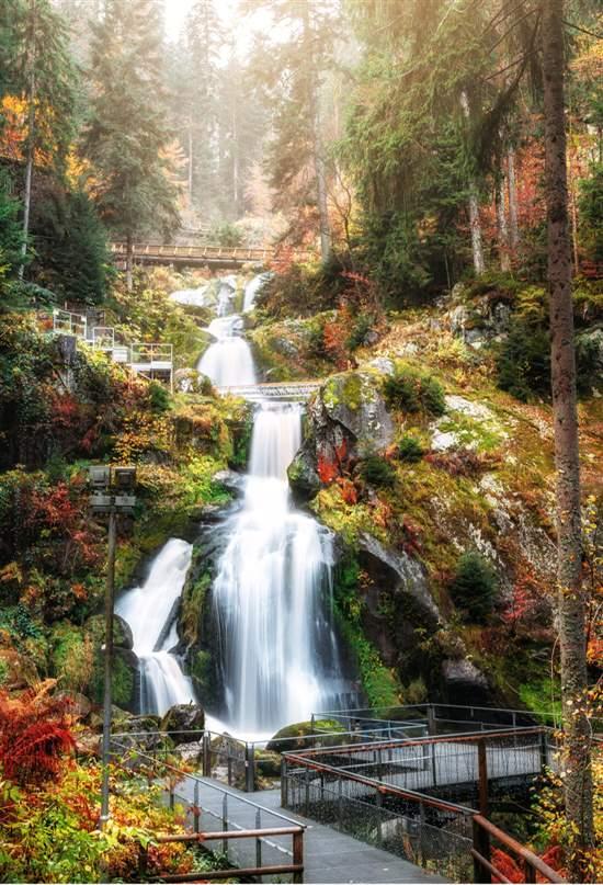 Selva Negra: de emblema del grand tour a referente en turismo sostenible
