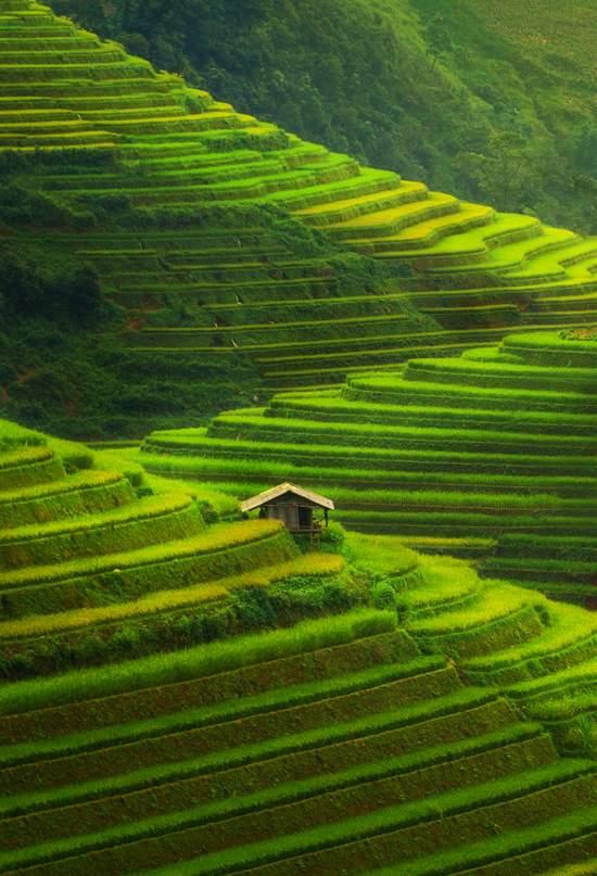 Vídeo: Las maravillas naturales de Vietnam